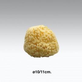 Spugna da bagno naturale ø10-11 cm.