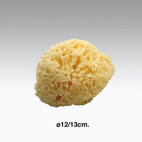 Spugna da bagno naturale ø12-13 cm.