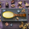Spazzola tartarugata in scatola da regalo. Pneumatica con picchi in metallo dorato